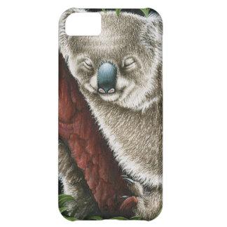 睡眠のコアラの穹窖の箱 iPhone5Cケース