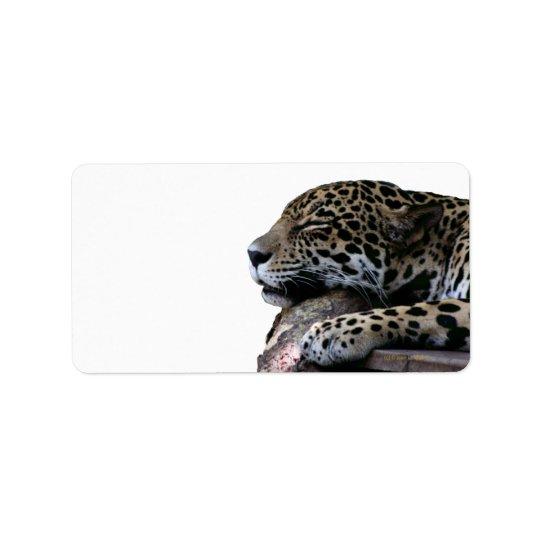 睡眠のジャガー背景無し ラベル