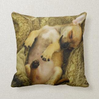 睡眠のチワワの子犬の枕 クッション