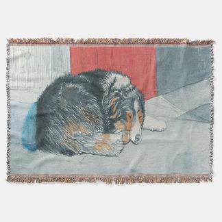 睡眠のボーダーコリー スローブランケット