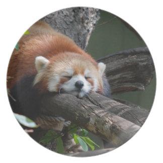 睡眠のレッサーパンダのプレート プレート