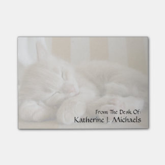 睡眠の子ネコ ポストイット