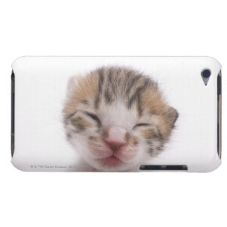 睡眠の子ネコ、頭部のクローズアップ Case-Mate iPod TOUCH ケース