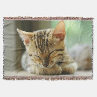睡眠の小さい赤ん坊の子猫 スローブランケット