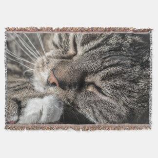 睡眠の虎猫 スローブランケット