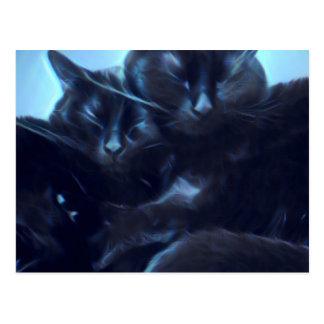 睡眠の黒猫 ポストカード