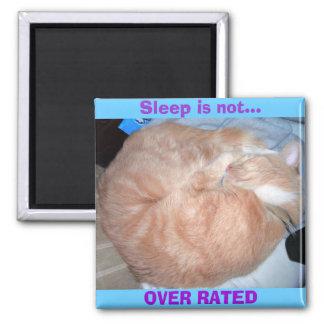 睡眠は評価されるに…、ありません マグネット