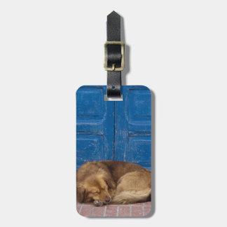 睡眠犬、Essaouira、モロッコ ラゲッジタグ