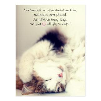 睡眠猫場面J.M.ロマンチックなBarrieの引用文 ポストカード