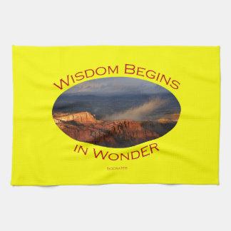 知恵は驚異で始まります キッチンタオル