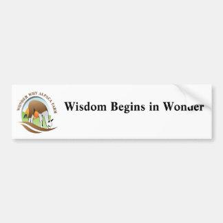 知恵は驚異で始まります バンパーステッカー