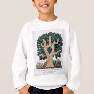 知識の木 スウェットシャツ