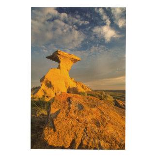 短い草の彫刻が施された荒地の形成 ウッドウォールアート