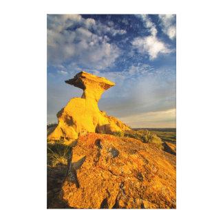 短い草の彫刻が施された荒地の形成 キャンバスプリント