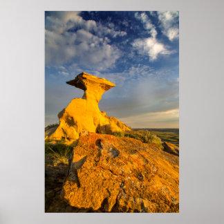 短い草の彫刻が施された荒地の形成 ポスター