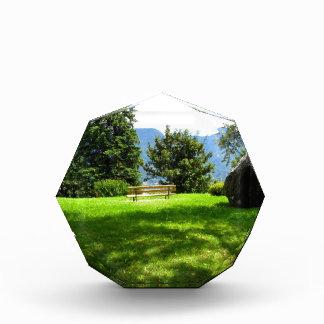 石が付いている草原のベンチ 表彰盾