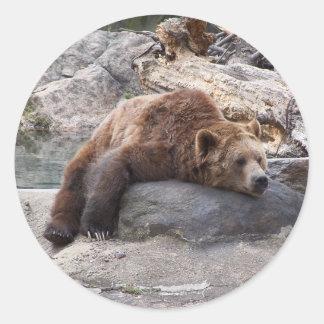 石で休んでいる灰色グマ ラウンドシール