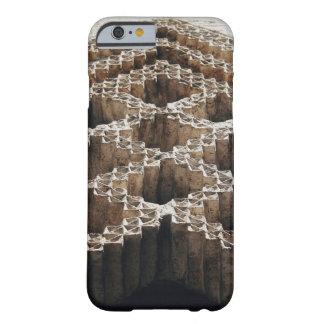 石で切り分けられる BARELY THERE iPhone 6 ケース