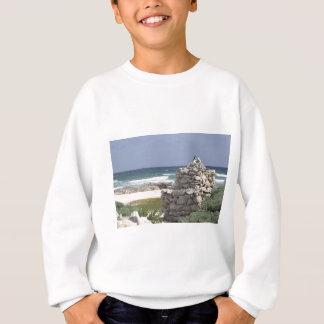 石で日に晒すこと スウェットシャツ