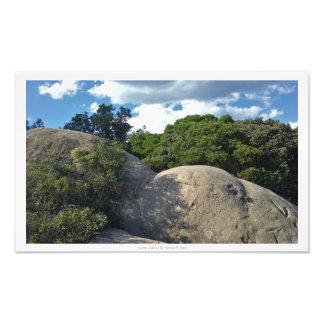 """""""石で書かれて""""、自然の装飾 フォトプリント"""