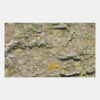石のコケ 長方形シール