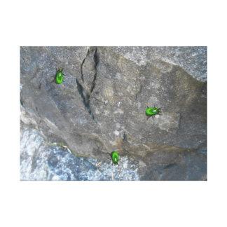 石のバックラムの緑の宝石のオオタマオシコガネの運のカブトムシ キャンバスプリント