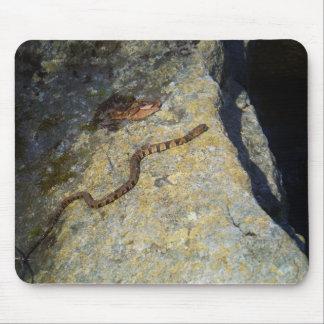 石のブラウンパターンヘビ マウスパッド