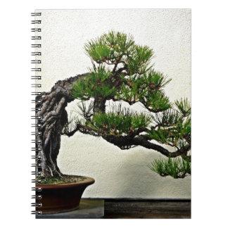 石のマツ盆栽の木上の根 ノートブック