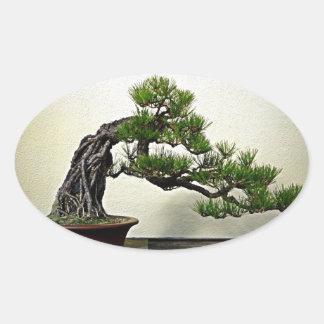 石のマツ盆栽の木上の根 楕円形シール