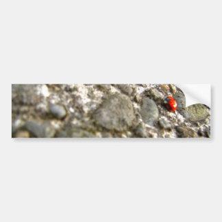 石の女性 バンパーステッカー