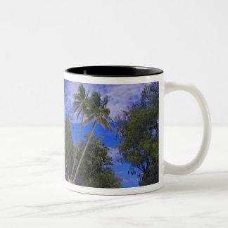 石の島パラオ諸島 ツートーンマグカップ