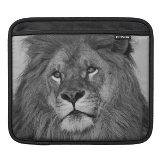 石の崖で休んでいるアフリカのライオン iPadスリーブ