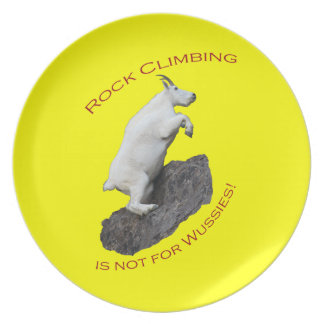 石の登山はWussiesのためではないです! プレート