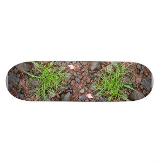 石の草のスケートボード 20.6CM スケートボードデッキ