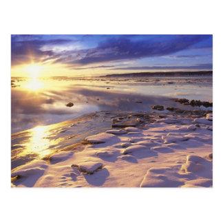 石の雪が付いている川岸 はがき