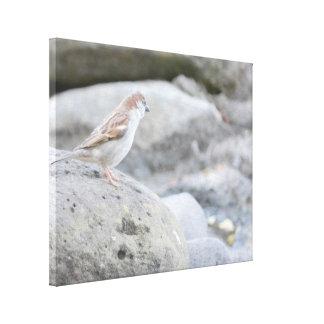 石の鳥 キャンバスプリント