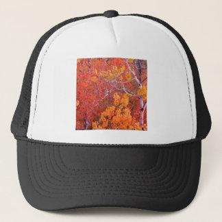 石アイダホの秋の《植物》アスペンの木都市 キャップ