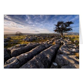 石灰岩の国 カード