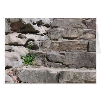 石造りのステップ カード