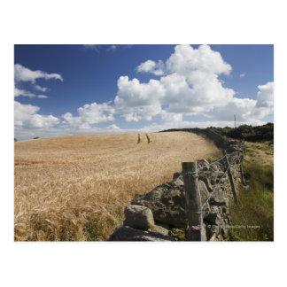 石造りの塀に沿って造られる有刺鉄線の塀 ポストカード