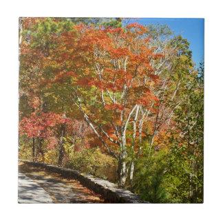 石造り山の秋 タイル