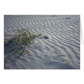 砂のさざ波 カード