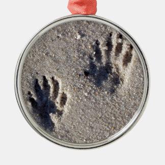砂のアライグマトラック メタルオーナメント
