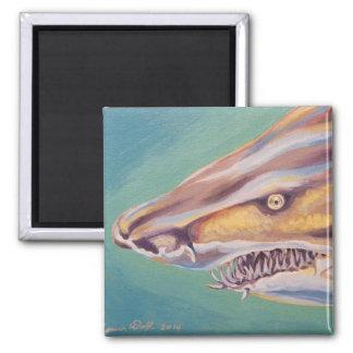 砂のイタチザメ マグネット