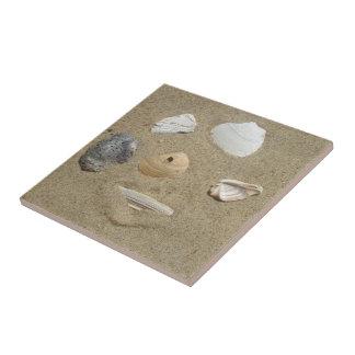 砂のタイルの貝殻 正方形タイル小