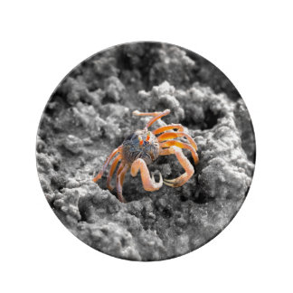 砂のバブラーのカニ 磁器プレート