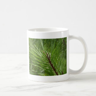 砂のマツbuds.JPG コーヒーマグカップ