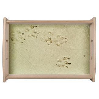 砂の子犬のプリント トレー