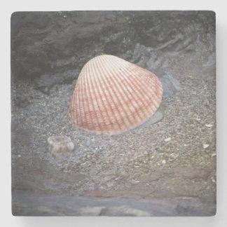 砂の海の貝 ストーンコースター
