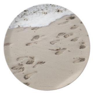 砂の混同した足音 プレート